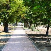 Small sochaczew park