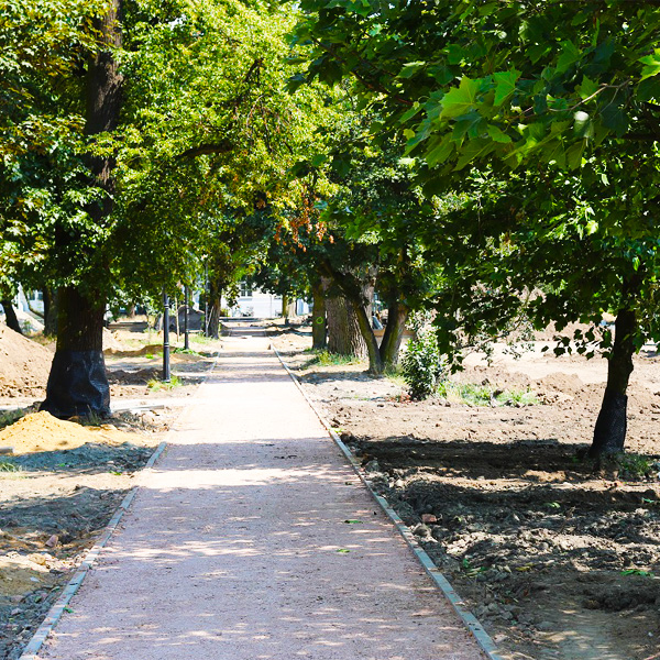 Sochaczew park