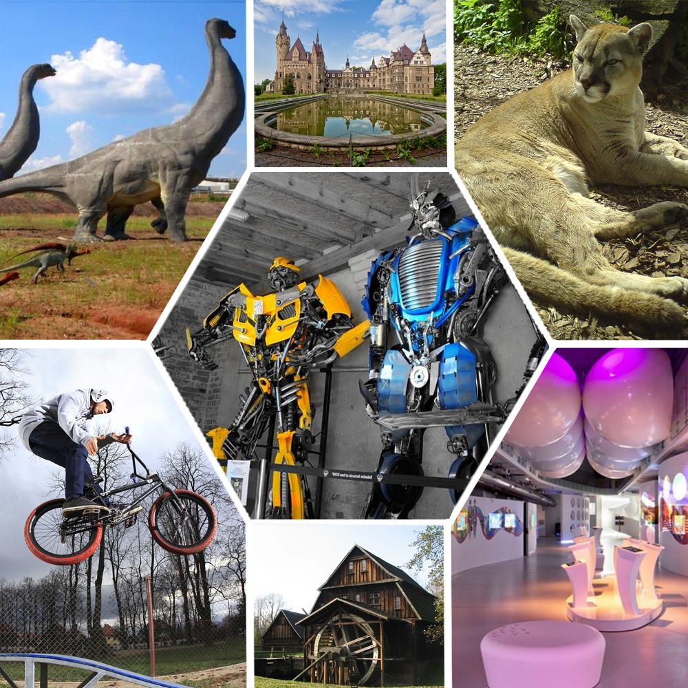 TOP 11 Atrakcji Turystycznych Opolskiego