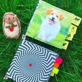 Small w naszej bajce   ksiazeczki materialowe dla dzieci parenti