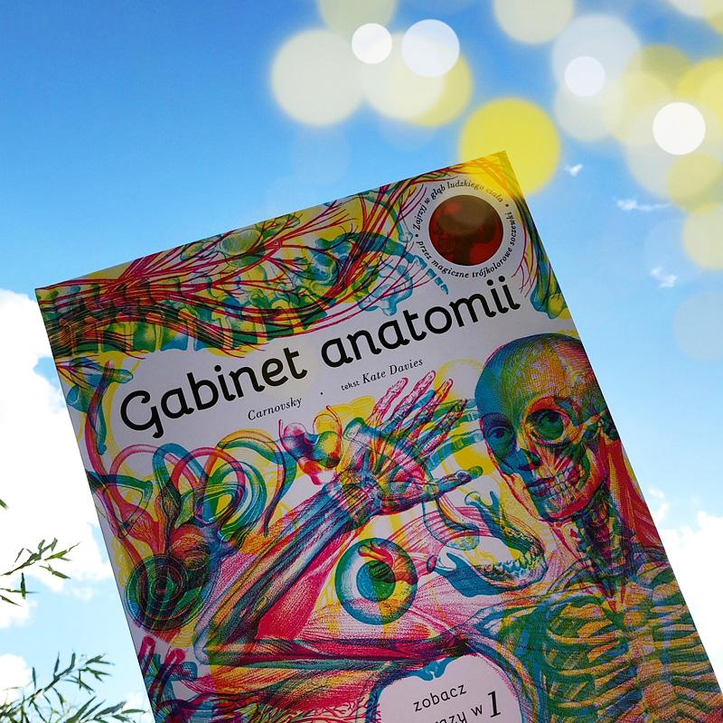 Ksiazka dla dzieci gabinet anatomii
