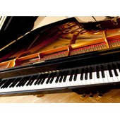 Small chopin2013 fortep 1446042913