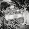 9 powodów, dla których dzieci powinny mieć kontakt ze zwierzętami zdjęcie 0