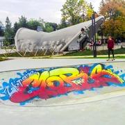Small skatepark zakopane park pilsudskiego