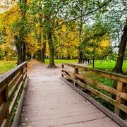 Small park tadeusza kosciuszki w krakowie