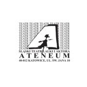 Small ateneum katowice 3