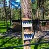 mini zoo park kuronia sosnowiec zdjęcie 9