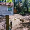 Mini Zoo w parku J. Kuronia w Sosnowcu