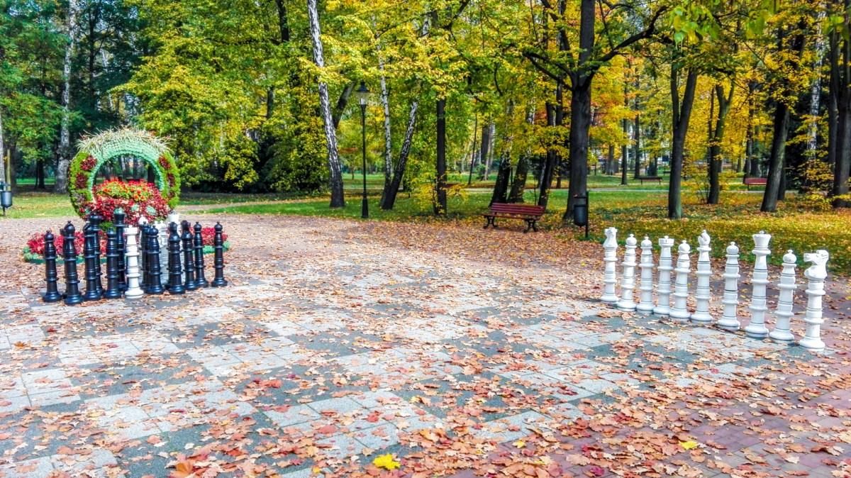 Park zdrojowy w Goczałkowicach zdjęcie 1