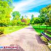 Park Kościuszki Katowice