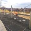 Ogród jordana Sosnowiec Park Środula