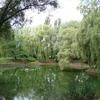 Miejski Ogród Botaniczny w Zabrzu