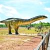 Park Nauki i Rozrywki w Krasiejowie zdjęcie 5