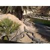 Farma Krokodyli - Explore Park Djerba