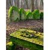 Mazurskie Stonehenge