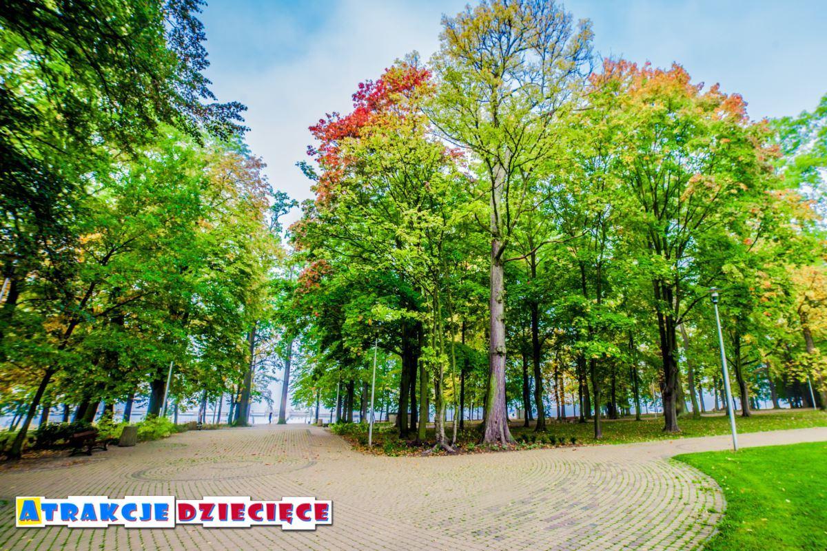 park nad jeziorem Paprocany w Tychach zdjęcie 6