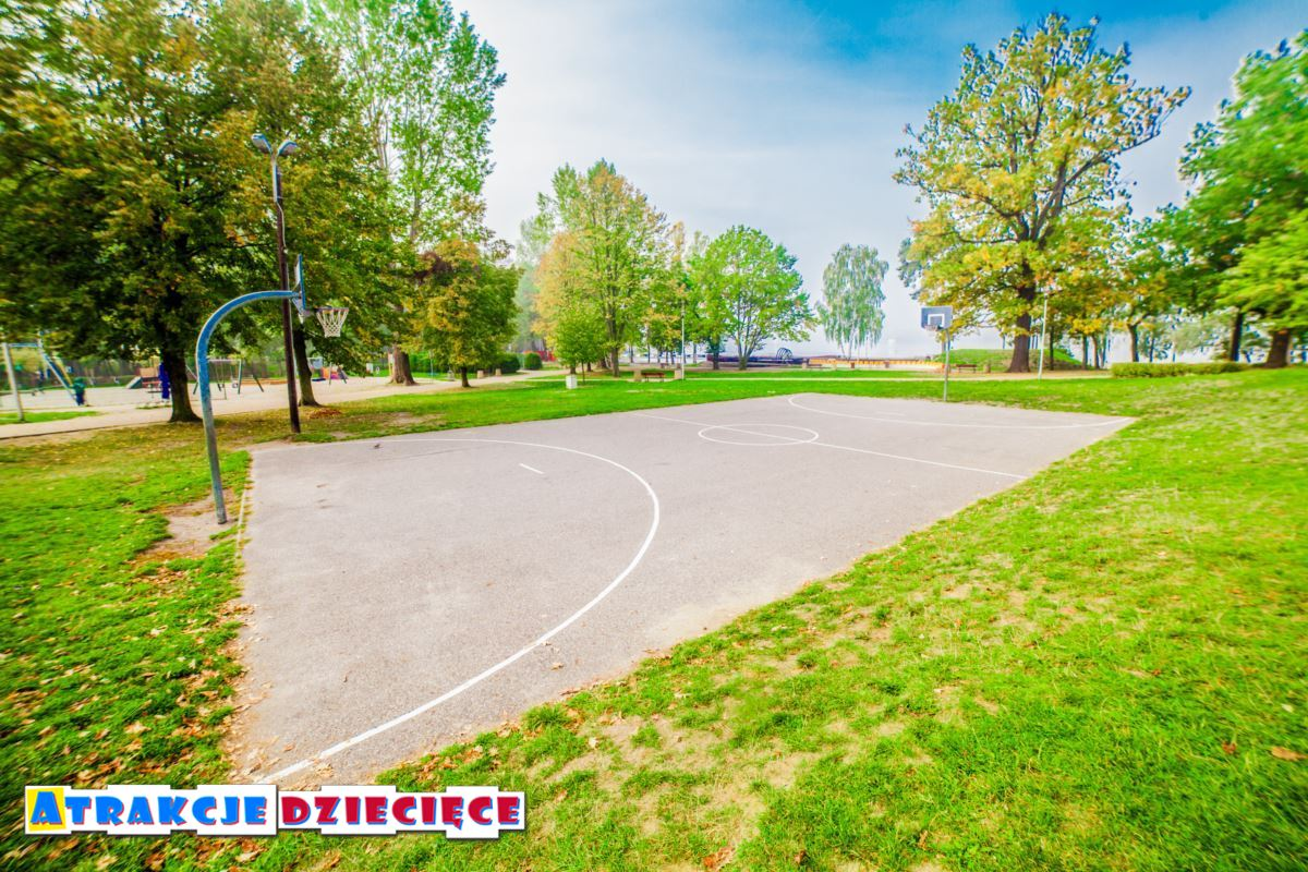 park nad jeziorem Paprocany w Tychach zdjęcie 7