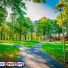 Park Będzin Warpie