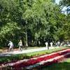 atrakcje dla dzieci w parku zdrojowym w Świnoujściu zdjęcie 2