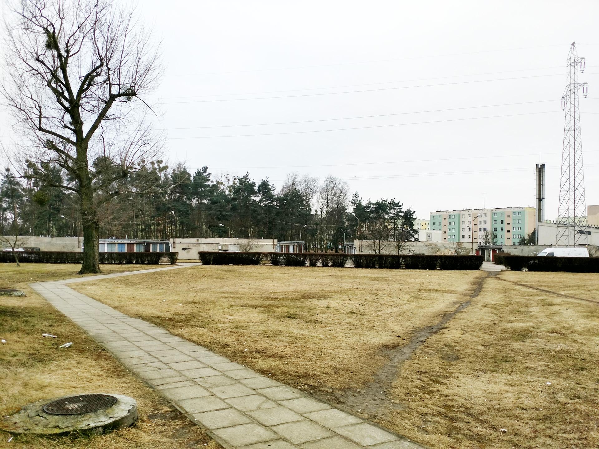 Rewitalizacja terenu w Trojanowie Sochaczew
