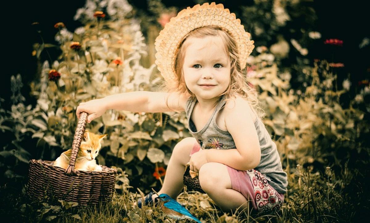 gospodarstwo agroturystyczne dla dzieci Między Zamkami