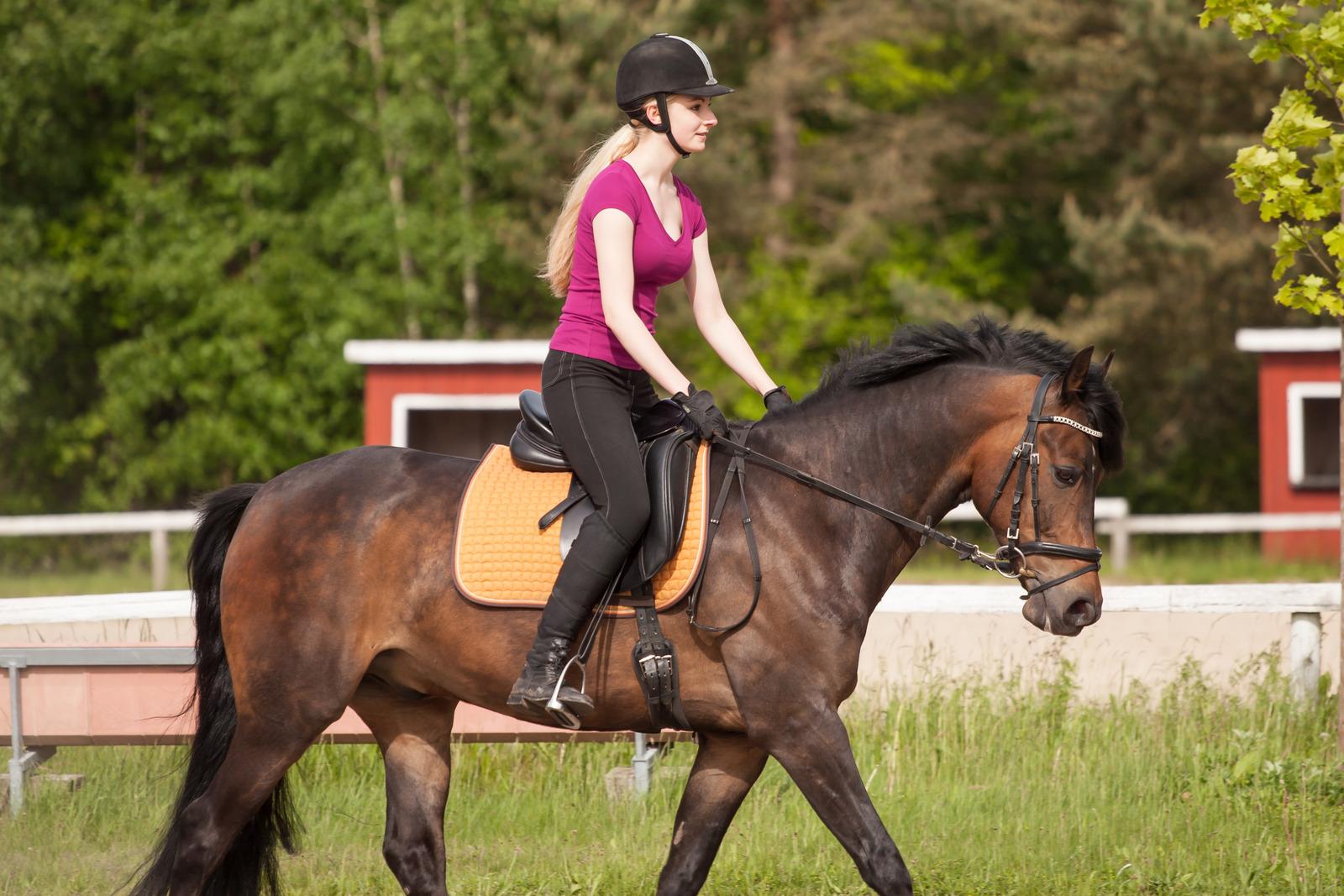 obóz jazdy konnej dla dzieci