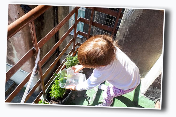 warzywny ogródek dla dzieci na balkonie