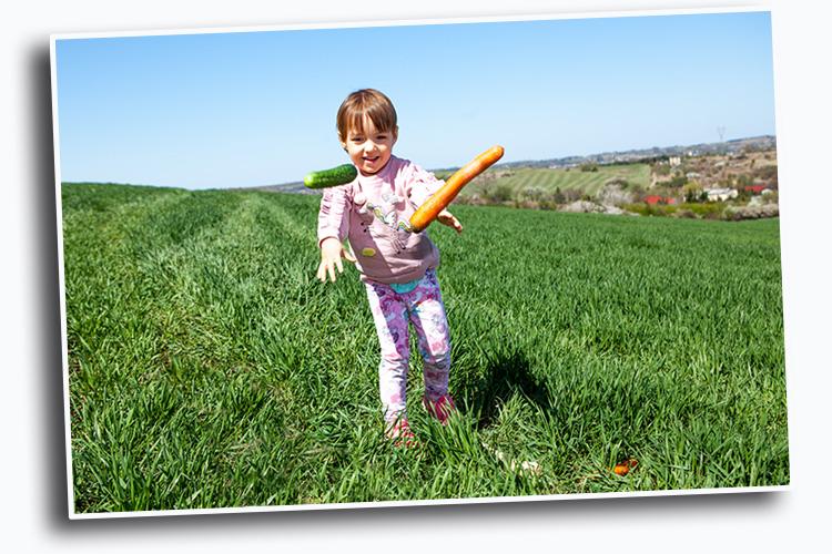 skąd biorą się warzywa lekcja dla dzieci